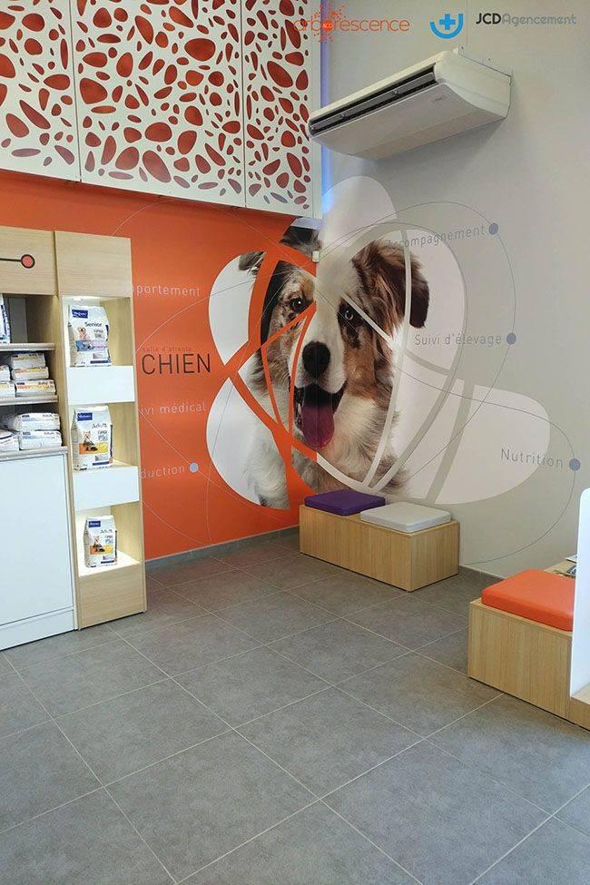 jcda-agencement-espace-attente-chien